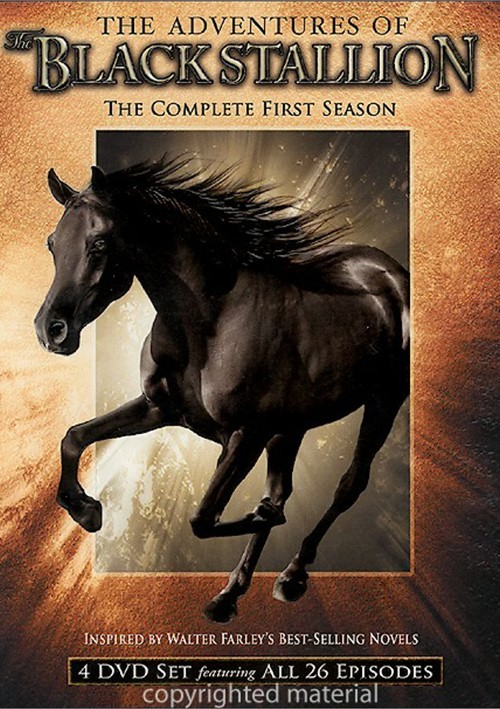 a tale of a black courageous stallion Raising courageous kids picture books on raising courageous kids picture books on courage 2 retelling of the well-known tale in which two children are left.