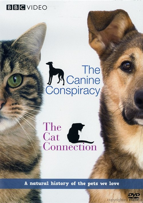 Canine Conspiracy, The / The Cat Connection