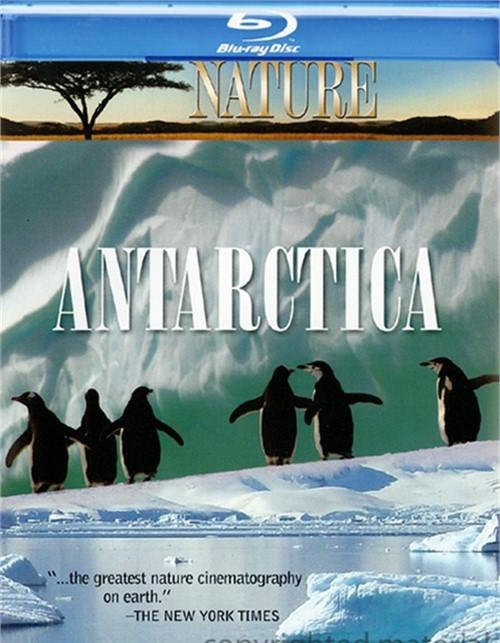 Nature: Antarctica