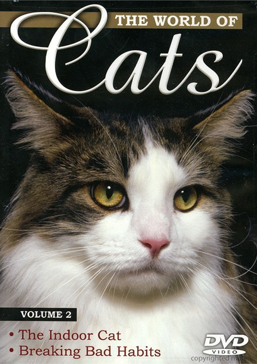 World Of Cats, The: Volume 2