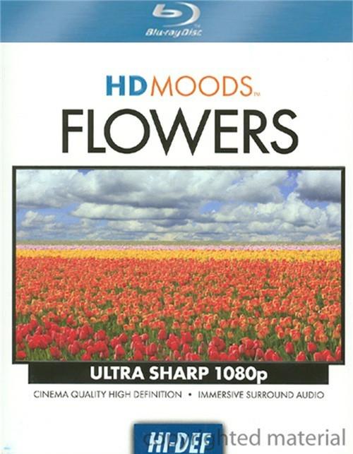 HD Moods: Flowers