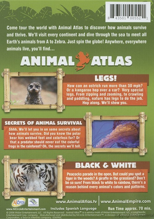 animal atlas animal mysteries dvd dvd empire. Black Bedroom Furniture Sets. Home Design Ideas