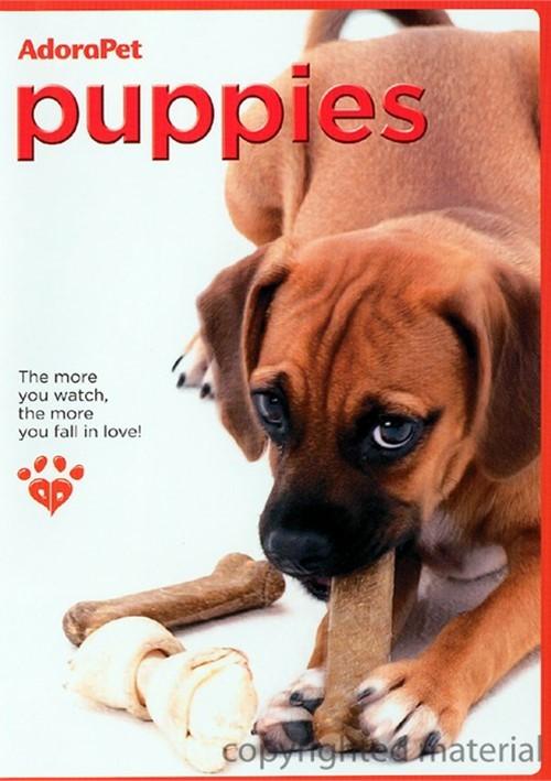 AdoraPet: Puppies