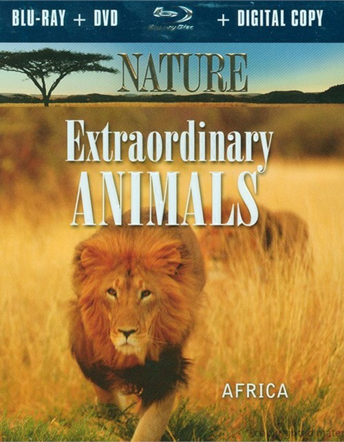 Nature: Extraordinary Animals - Africa