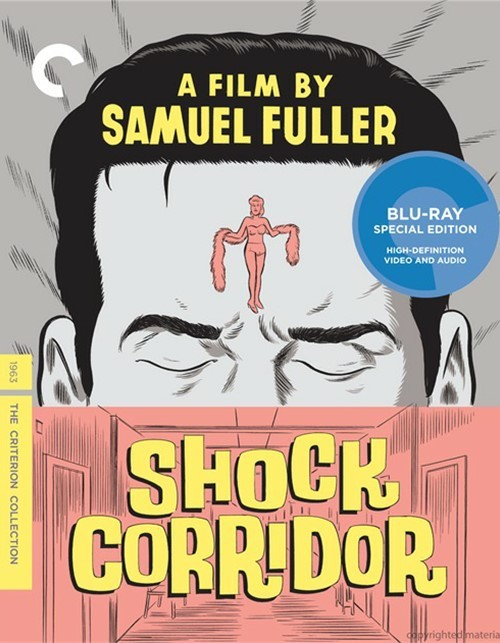 Shock Corridor: The Criterion Collection