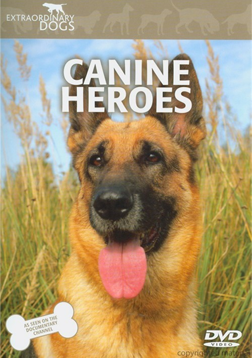 Extraordinary Dogs: Canine Heroes