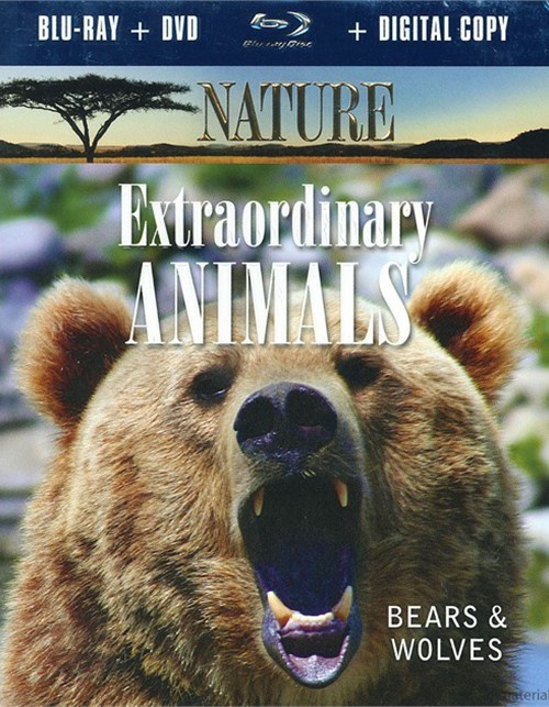 Nature: Extraordinary Animals - Bears And Wolves (Blu-ray + DVD + Digital Copy)