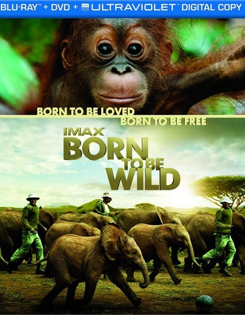 IMAX: Born To Be Wild (Blu-ray + DVD + Digital Copy)