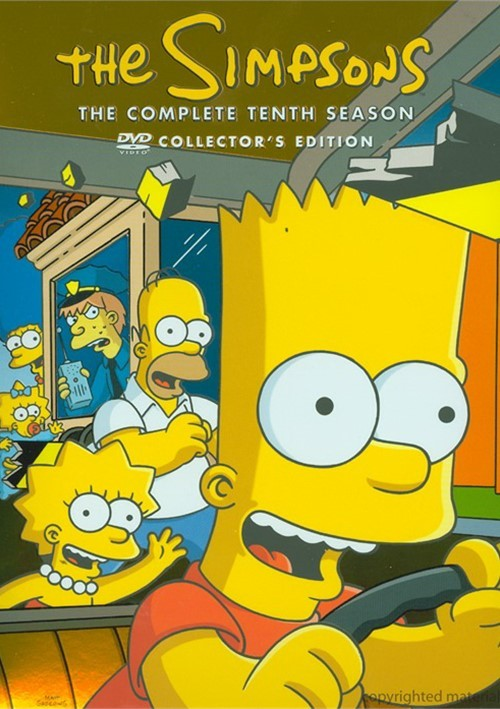 Simpsons, The: The Complete Tenth Season