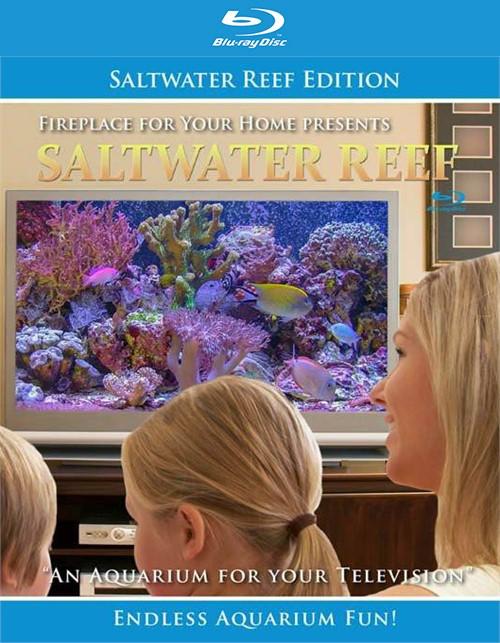 Aquarium For Your Home