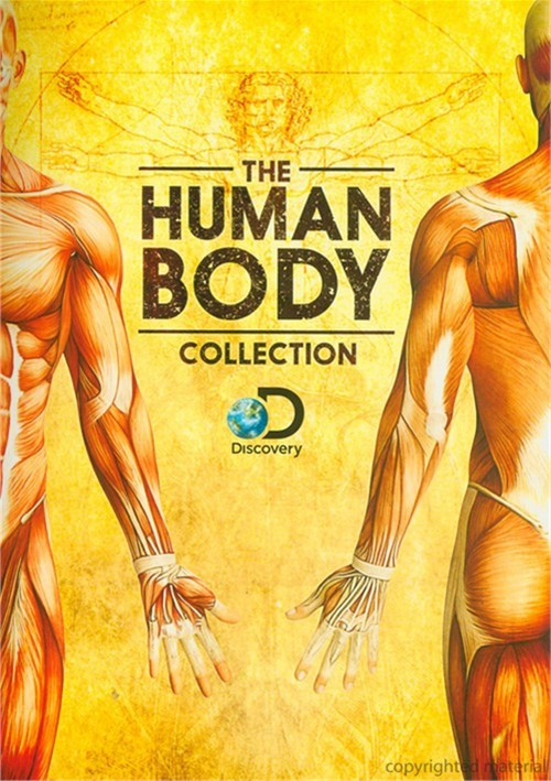 Human Body Collection, The