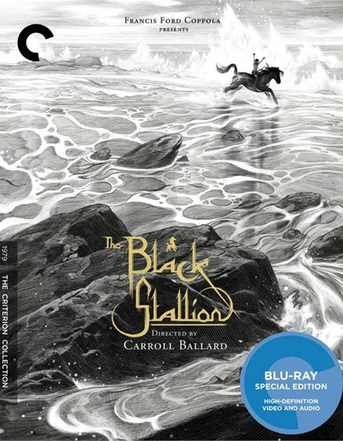 Black Stallion, The: The Criterion Collection