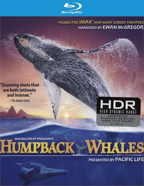 Imax: Humpback Whales (Blu-Ray + UltraViolet)