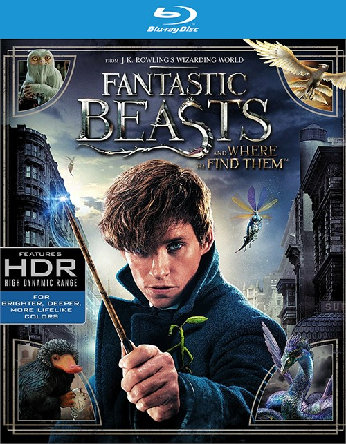 Fantastic Beasts and Where to Find Them (4K Ultra HD + Blu-ray + UltraViolet)