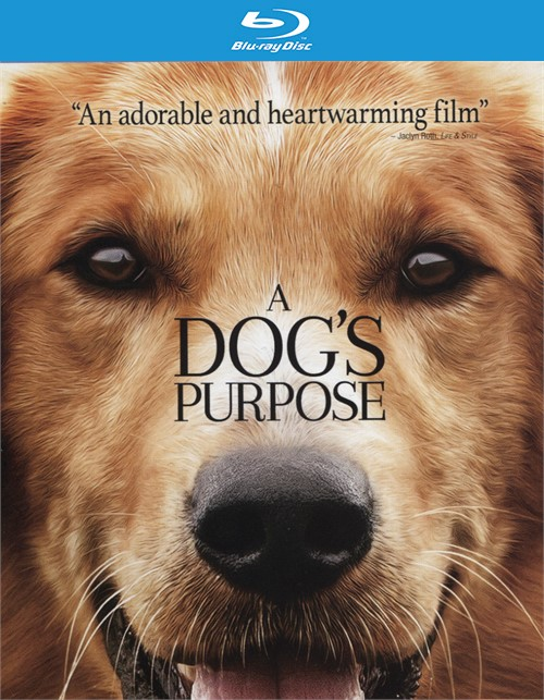 A Dogs Purpose (Blu-ray + DVD + UltraViolet)