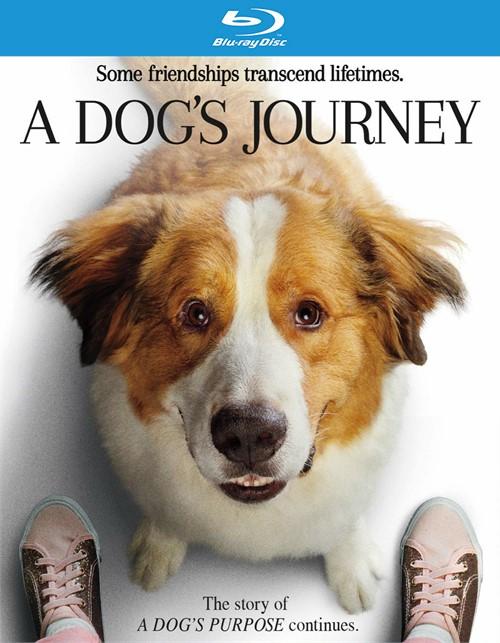 Dogs Journey, A (BLURAY/DIGITAL)