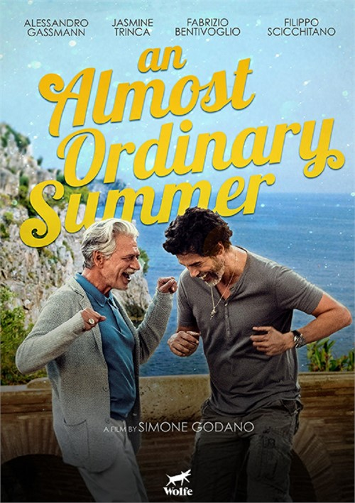 Almost Ordinary Summer, An