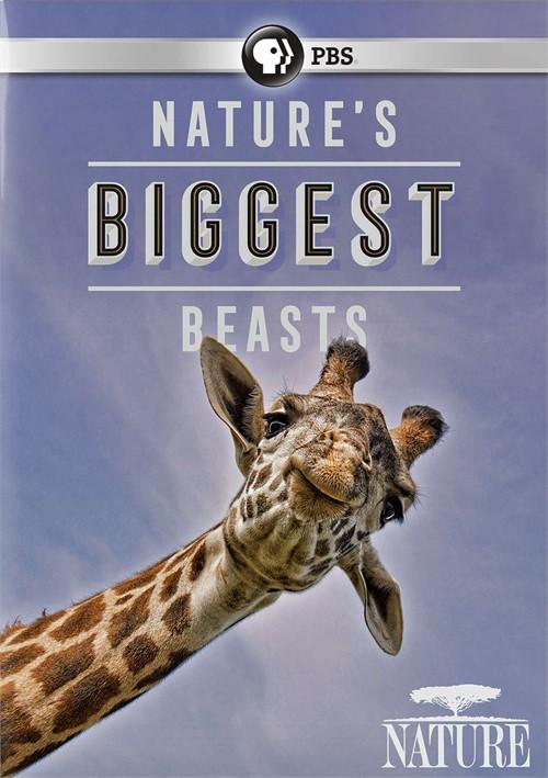 Nature: Natures Biggest Beasts
