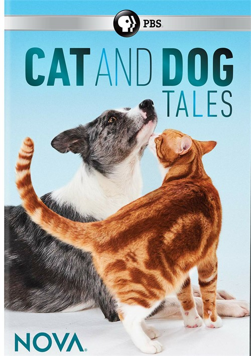 Nova-Cat and Dog Tales