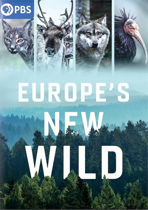 Europes New Wild