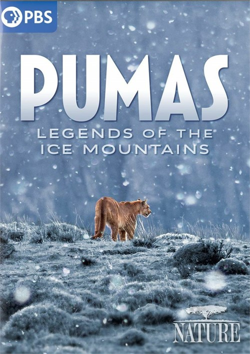 Nature: Pumas - Legends Of The Ice Mountains