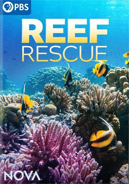 NOVA: Reef Rescue