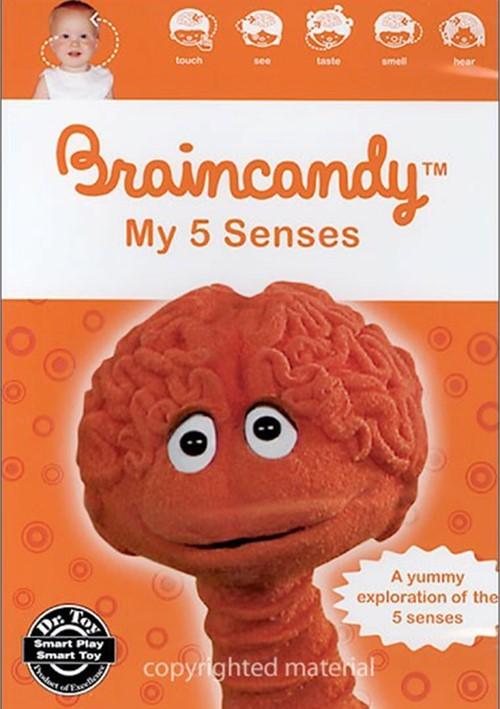 Braincandy:  My 5 Senses