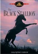 Black Stallion, The Movie