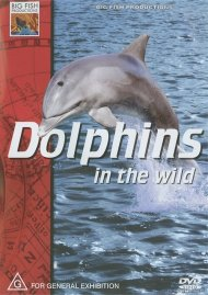 Dolphins In The Wild Movie