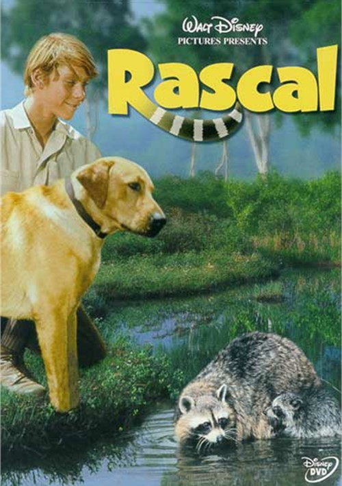 Rascal Movie